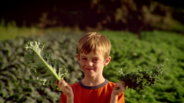 boy holdiing leaves of kale in front of face in field of kale / parting leaves and smiling at camera - in front of stock videos and b-roll footage