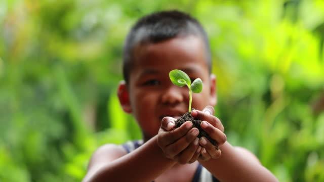 Boy holding a little green plant