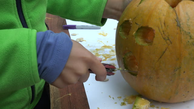 boy holding a pocket knife and carving out the mouth of the halloween pumpkin - carving knife stock videos and b-roll footage