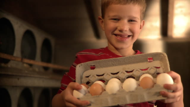 MS Boy (10-11) holding carton of eggs and smiling / Wilmington, Illinois, USA