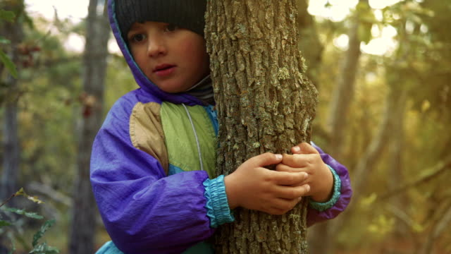 boy hugging a tree trunk - tree hugging stock videos & royalty-free footage