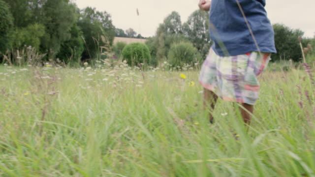 boy in meadow - exploration stock videos & royalty-free footage