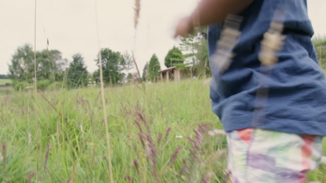 boy in meadow - 18 23 months stock videos & royalty-free footage