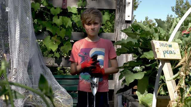 boy in the community garden - gardening glove stock videos & royalty-free footage