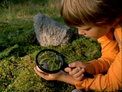 MS Boy inspecting shells with magnifying glass/ Vinalhaven, Maine