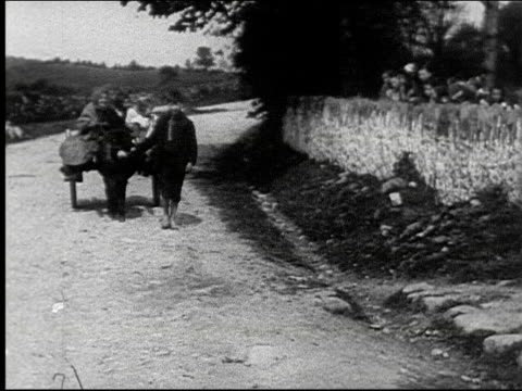 stockvideo's en b-roll-footage met boy leading a mule drawn cart carrying a woman and two children / children line a stone wall watching country road rural boy leading a mule drawn... - blootvoets