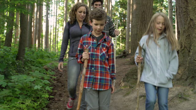vídeos y material grabado en eventos de stock de boy leading family on forest hike - toma en travelling