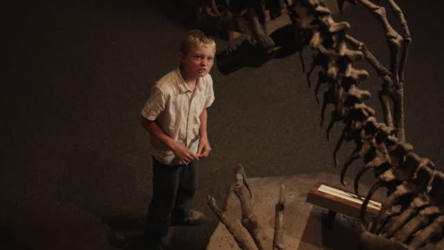 MS HA Boy (10-11) looking at dinosaur's skeleton in natural history museum, Lehi, Utah, USA