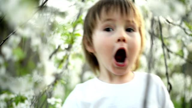 少年カメラを見ている - 4歳から5歳点の映像素材/bロール