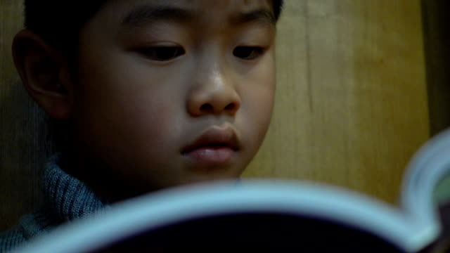 boy love reading in bookstore - picture book stock videos and b-roll footage