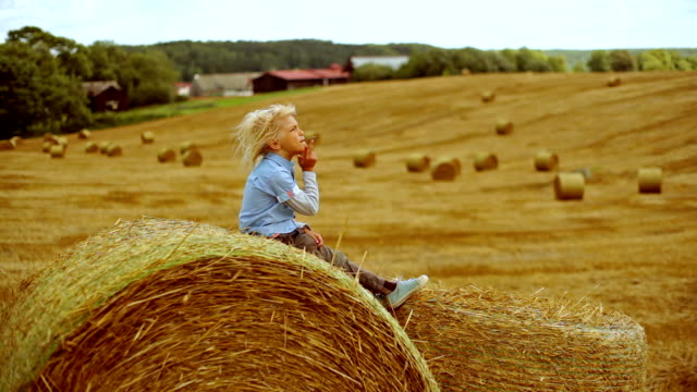 boy on a bundle of hay - hay stock videos and b-roll footage