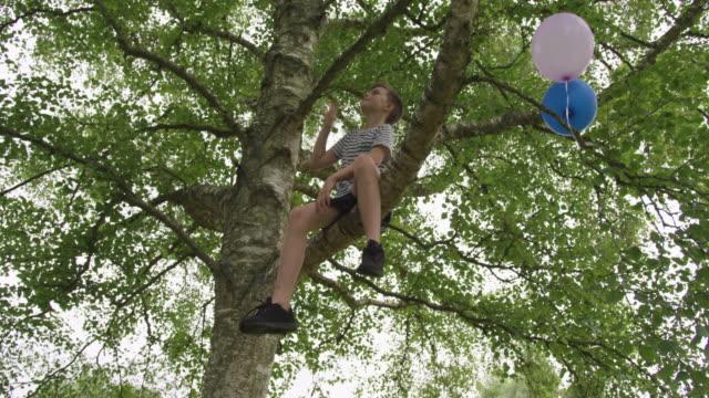 boy on tree - ウィルトシャー州点の映像素材/bロール