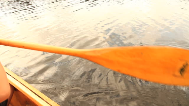 cu boy (6-7) paddling canoe at lake, close-up of hand holding paddle, ashburnham, massachusetts, usa - canoeing stock videos and b-roll footage