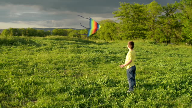 boy playing with a kite in the park - kite toy stock videos and b-roll footage