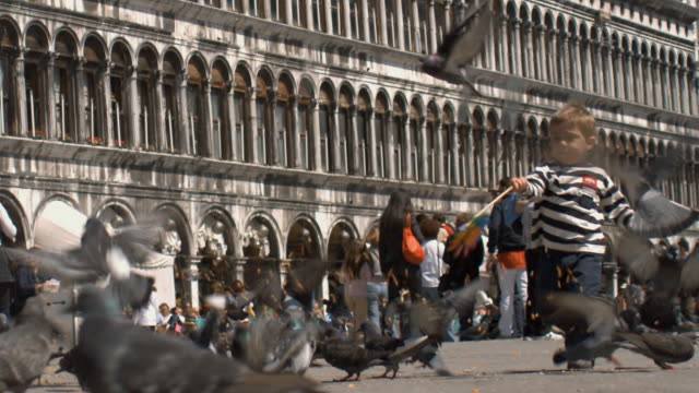 slo mo, ms, boy (2-3) playing with pigeons on saint mark's square, venice, italy - courtyard stock videos & royalty-free footage