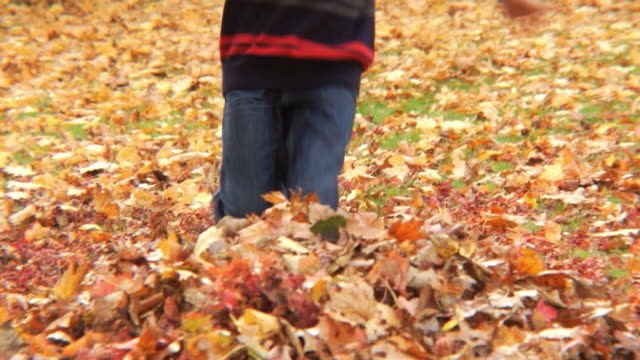 MS TD Boy (8-9) playing with pile of leaves / Montclair, New Jersey, USA