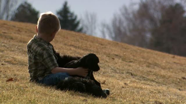 boy playing with puppies outdoors - andere clips dieser aufnahmen anzeigen 1166 stock-videos und b-roll-filmmaterial