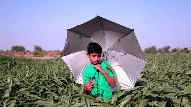 boy portrait with umbrella - sorghum stock videos and b-roll footage