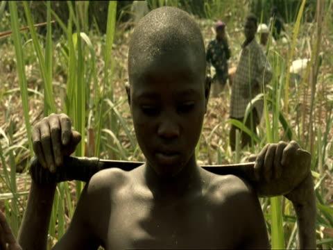 cu pan td tu boy poses with machete, other boys peeling sugar cane with machetes / kigali, rwanda - フツ族点の映像素材/bロール
