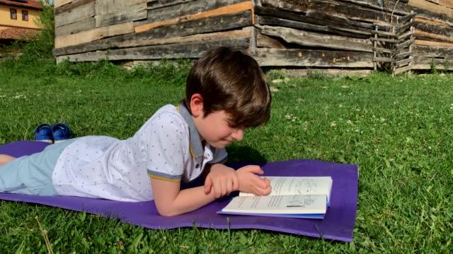 vidéos et rushes de livre de lecture de garçon sur l'herbe - brightly lit