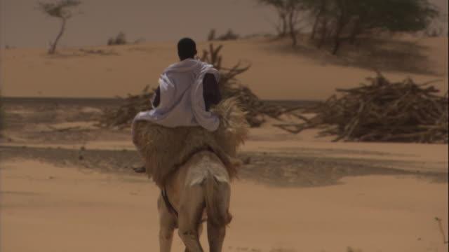 a boy rides a camel through a desert. - mauritania stock videos & royalty-free footage