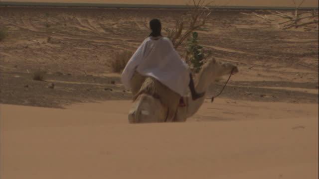 a boy rides a camel through the desert. - モーリタニア点の映像素材/bロール