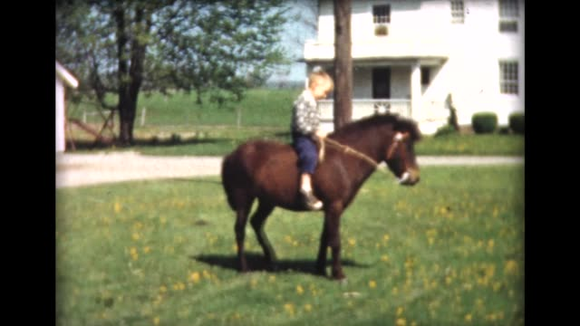 1961 boy rides pony bareback - horseback riding stock videos & royalty-free footage