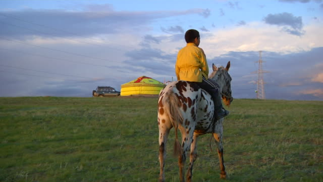 ms boy riding on horse / ulaan baatar, tuv, mongolia - attività equestre ricreativa video stock e b–roll