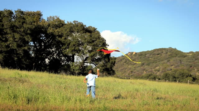 WS TS Boy (8-9) running and flying  kite in large grassy field / Los Angeles, California, USA