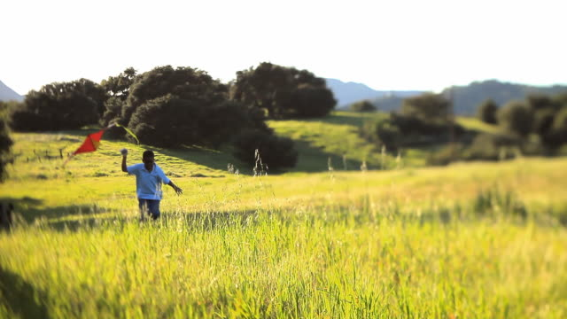 WS MS Boy (8-9) running and flying  kite in large grassy field / Los Angeles, California, USA