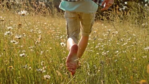 stockvideo's en b-roll-footage met slo mo ts jongen met blote voeten in het hoge gras - barefoot