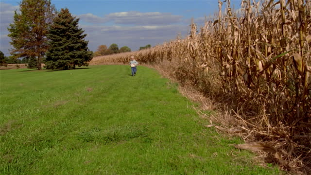 slo mo, ms, pan, boy (4-5 years) running through field, usa, pennsylvania, solebury - 4 5 years stock videos & royalty-free footage