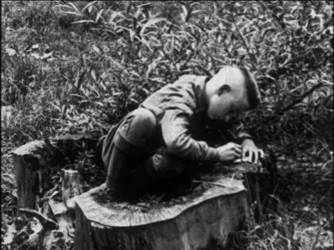 vidéos et rushes de b/w 1920 boy scout sitting in tree stump writing / educational - écrire