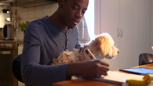 Boy sitting with dog while doing math homework at table