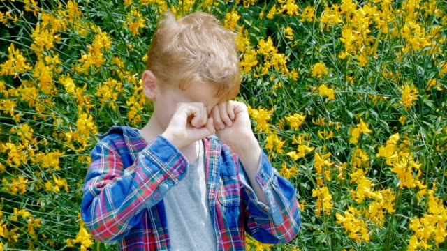 boy sneezing - hay fever stock videos & royalty-free footage