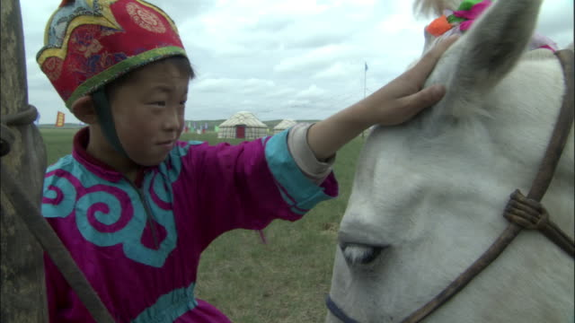 boy strokes head of horse, inner mongolia, china - stroking stock videos & royalty-free footage