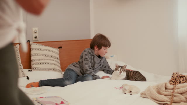 boy stroking cat in parent's bedroom during quarantine - stroking stock videos & royalty-free footage