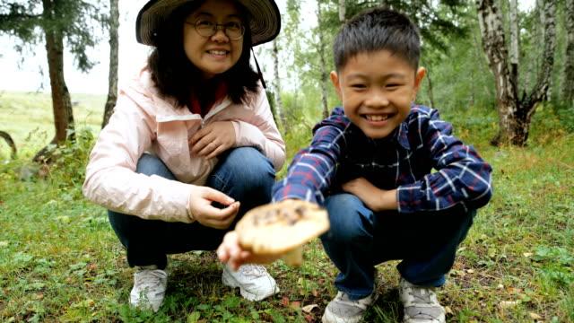 少年はキノコを摘むに成功する - 収穫する点の映像素材/bロール