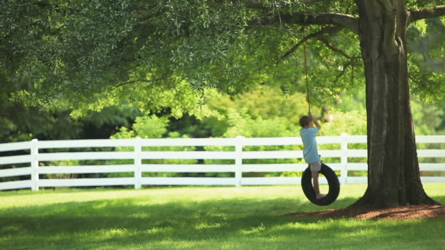 MS Boy (8-9) swinging on tire swing / Richmond, Virginia, USA