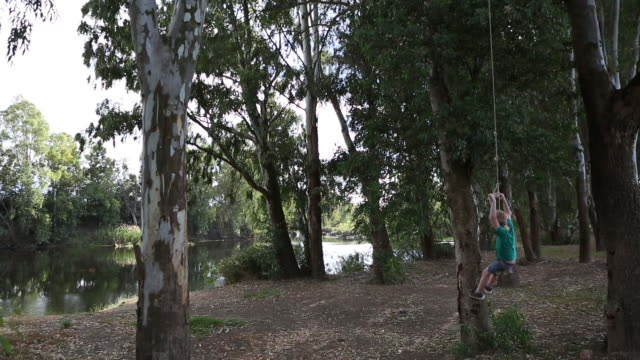 boy swinging on tree swing - swinging stock videos & royalty-free footage