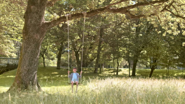 SLO MO DS Boy swinging under a big tree