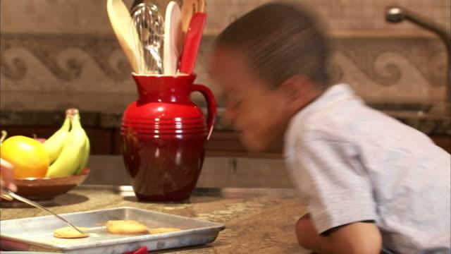 ms boy (4-5) taking cookies from baking sheet in kitchen / salt lake city, utah, usa - baking sheet stock videos & royalty-free footage