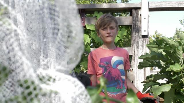 boy talking to the camera - gardening glove stock videos & royalty-free footage