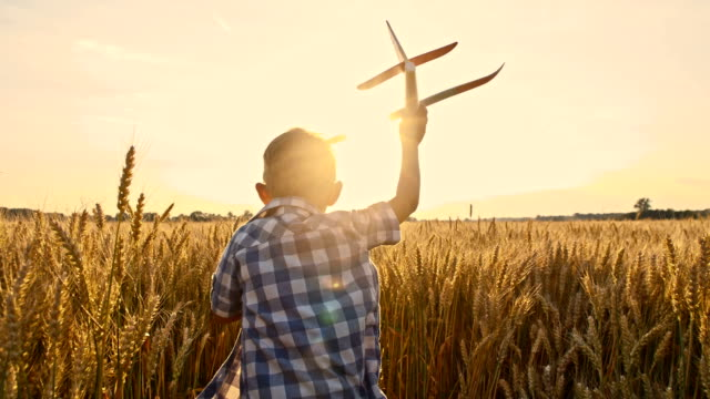 slo mo boy throwing airplane toy in wheat field - playful stock videos & royalty-free footage