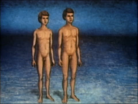 vídeos de stock, filmes e b-roll de 1985 animation boy transforming into man - nu