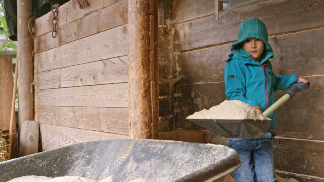 boy using a shovel and placing sawdust into a wheelbarrow - wheelbarrow stock videos and b-roll footage