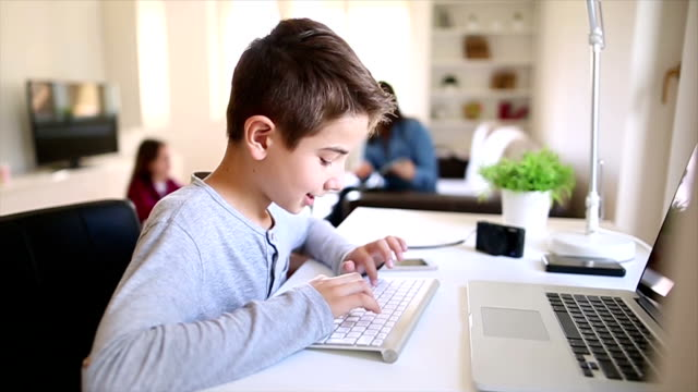 Boy using lap top at home