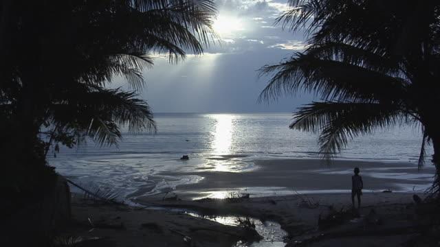 ws boy walking on beach at sunset / koh samui, thailand - insel ko samui stock-videos und b-roll-filmmaterial