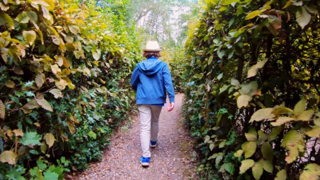 vídeos de stock, filmes e b-roll de a boy walking through a hedge maze - labirinto