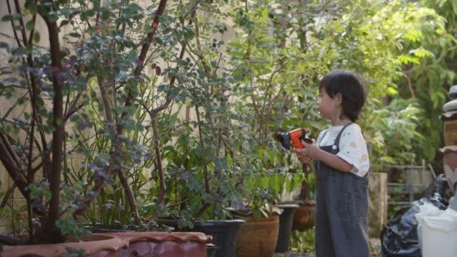 vidéos et rushes de garçon d'arrosage des plantes - arroser